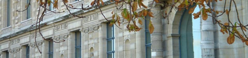 L'association de l'École du Louvre en bref